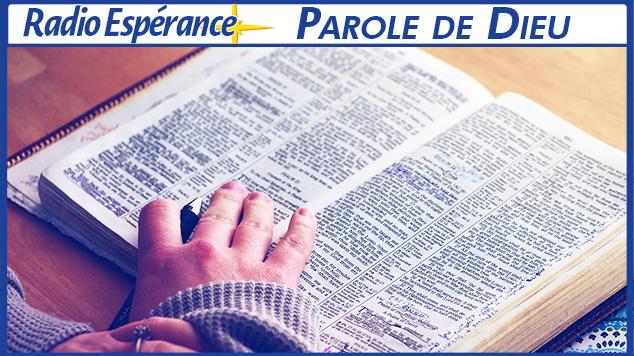 1ère lettre de S. Pierre 5,1-14