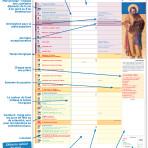 «Au jour le jour 2020» : le calendrier du chrétien
